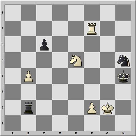 Posición 144: Pavasovic - Bosiocic