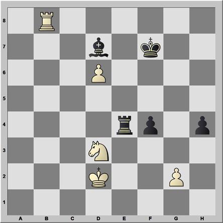 Posición 146: Damljanovic - Nikcevic