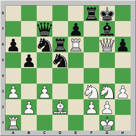 Mate 154: Ammon – Schoenberger